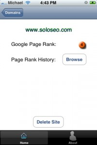 Domainer iPhone SEO application